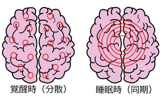 脳機能の分散・同期イメージ