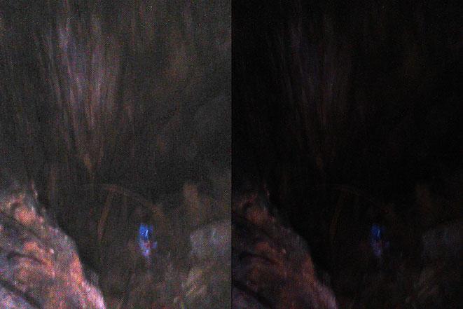 カッチナの新たな写真1(右元画像・左BTTP露出調整/新・時空のおっさんまとめ @ ウィキより)