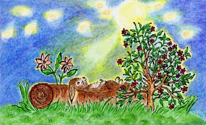 Der Hase Erpf Erdfell mondet sich (Buntstiftzeichnung)