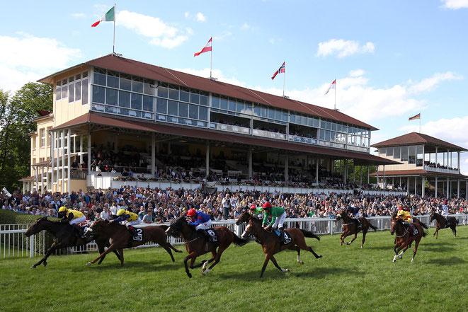 Rennpferde beim Pferderennen in Baden-Baden, Iffezheim