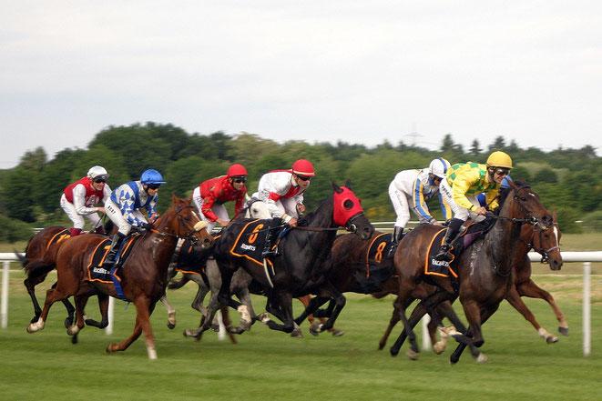 Pferde im Rennen auf der Galopprennbahn in Baden-Baden/Iffezheim
