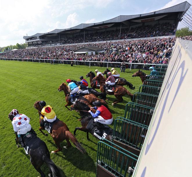 Bild: Pferderennen in Hannover