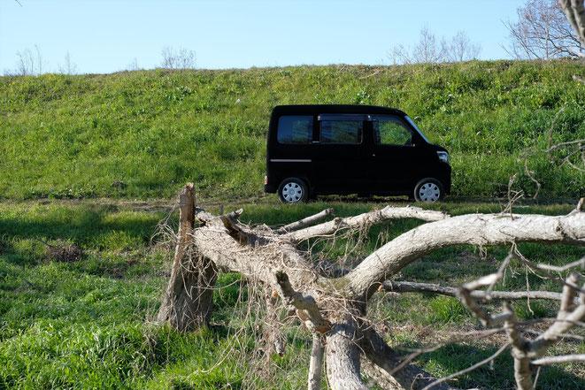 世界一黒い車3 ファインシャット