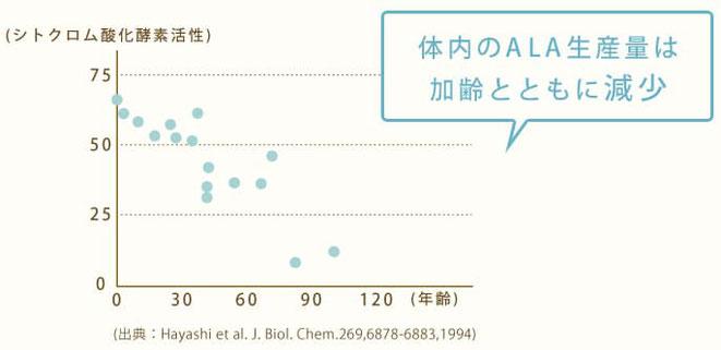 体内のALA生産量は加齢とともに減少