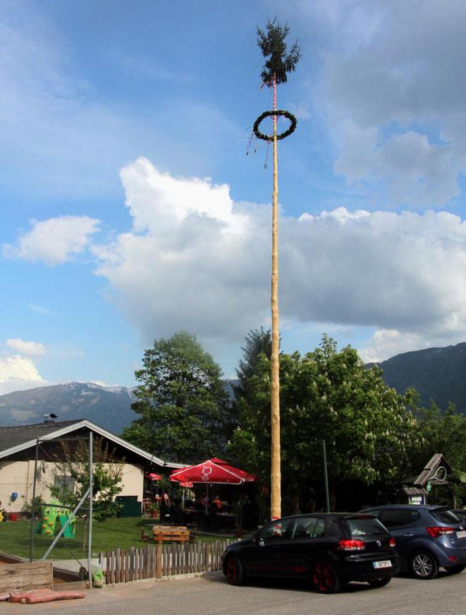 diesen Maibaum (19,48 Meter) gewannen die Tennisdamen aus Treffling bei Seeboden