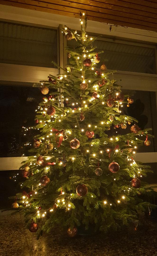 Unser Weihnachtsbaum 2018