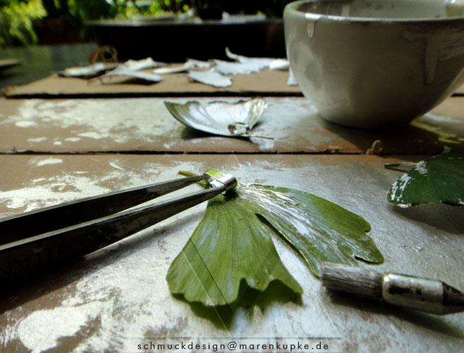 Neue Produktion der frischen Ginkgoblätter