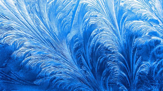 Quelle: WetterOnline / Glaskunst von Väterchen Frost: Eisblumen in Form von Federn, Fächern oder Blüten.