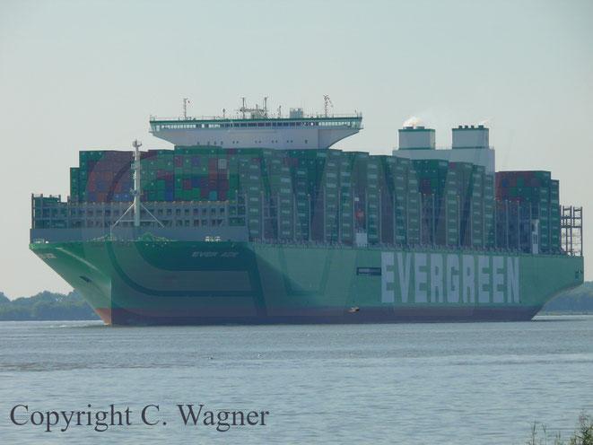 EVER ACE der Evergreen Reederei
