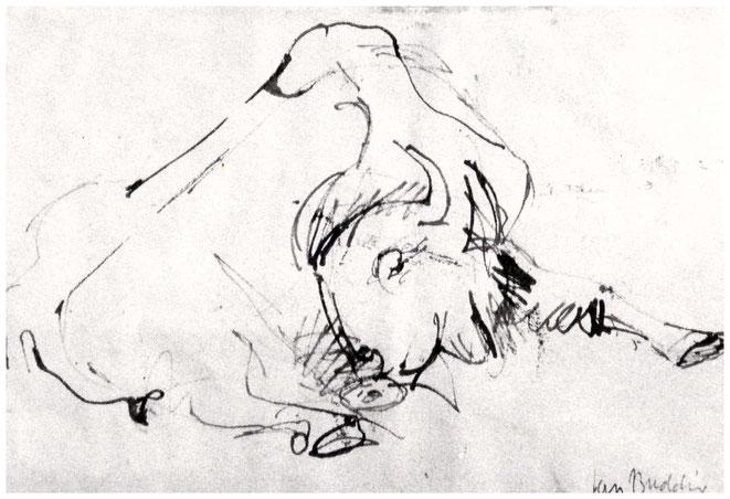 """Jan Budding """"Studie Rund"""" inkttekening 1950"""