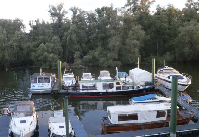 Marina Lampertheim Der Sportboothafen Im Lampertheimer Altrhein