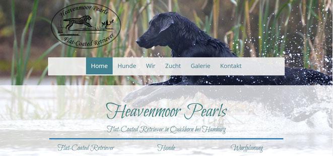 Heavenmoor Pearls Flat-Coated Retriever