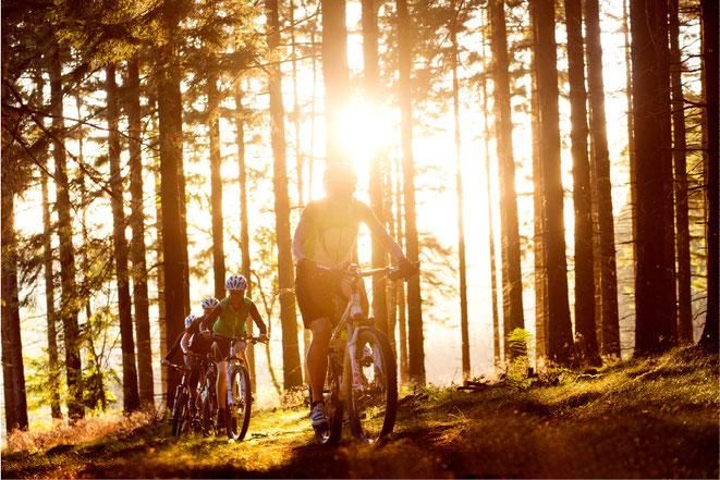 up&down Mountainbike Touren im Westerwald