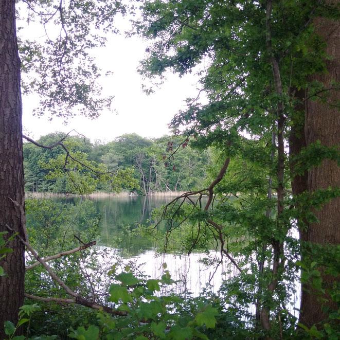 Großer Peetsch See Zislow