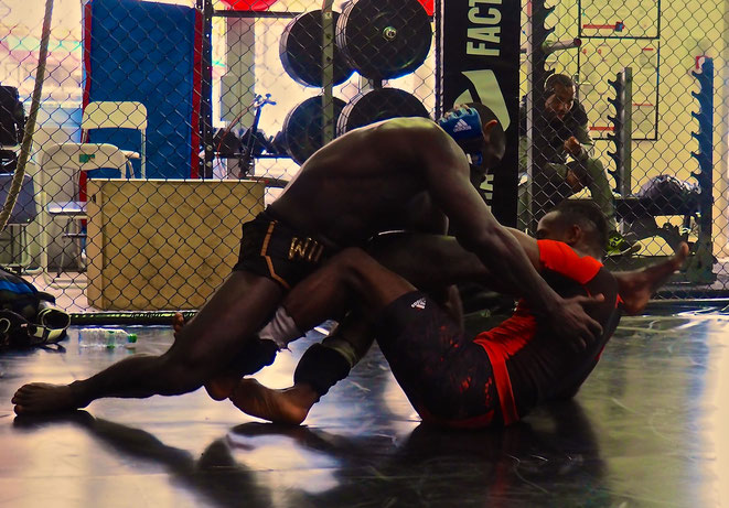 MMA Factory; MMA; Fernand Lopez; Cross fight; Taylor Lapilus; Francis Ngannou