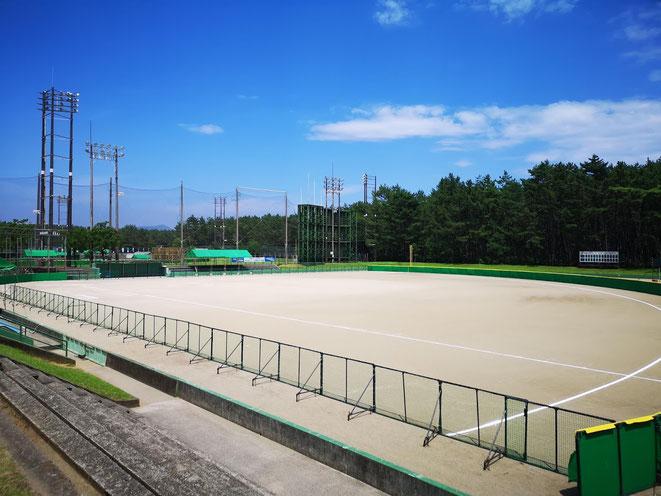 1回戦の球場です。空の青とグラウンドの白、松林の緑が鮮やかな青春の舞台でした。
