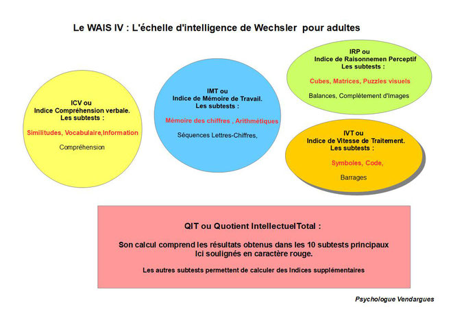Structure de la WAIS IV, test d'intelligence de Wechsler permettant notamment de calculer le Qotient Intellectuel (QI) dans le cadre d'un bilan psychologique.