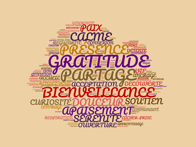 Pleine conscience - PACA - Mindfulness - Nuage de mots - Immanence - Méditation