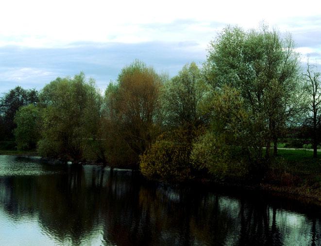 Moorsee im November