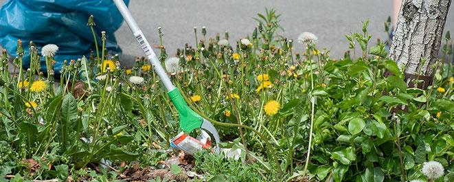 Clean Up, clean up, frühjahrsputz, chemnitz, sonnenberg, lessingplatz, explainora, umweltschutz, naturschutz