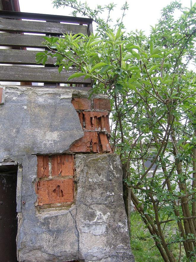 Putz  löst sich durch Feuchteschaden, Mauerwerk bröckelt