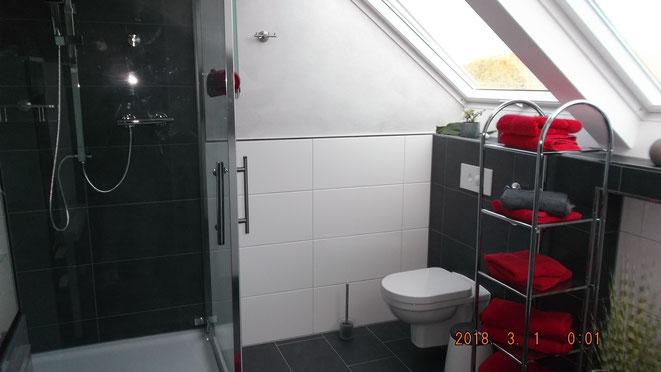 1mx1m große Dusche und WCt - Tageslicht, 2 große Fenster mit Solar Rollo mit Fernbedienung ausgestattet