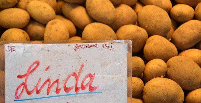 Diese Kartoffelsorte, sehr beliebt, sollte in einem geradezu hinterhältischen Verfahren vom Markt geklagt werden. Wären da nicht Bauern und Händler gewesen, die sich dagegen gewehrt haben. Man sieht, mit Erfolg.