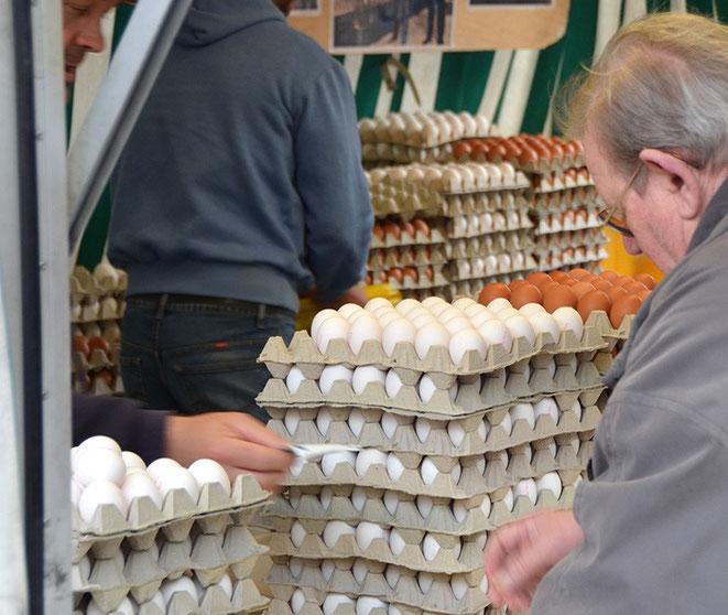 Zwar gleicht, wie das Sprichwort weiß, ein Ei dem anderen. Aber nicht alle Eier allen anderen. Hier kann man nach seinem eigenen Belieben wählen, dicke und dünne, Normal- und Bio-Eier, braune, weiße; Hauptsache: mit Appetit zu essen.