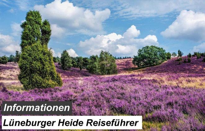 Bester Lüneburger Heide Reiseführer Empfehlung und Reiseinformationen