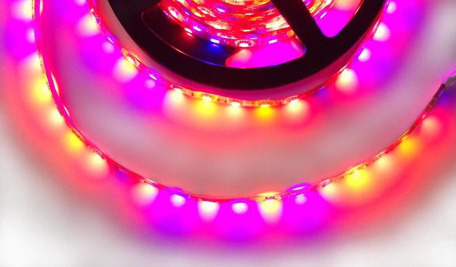 Grow LED strip