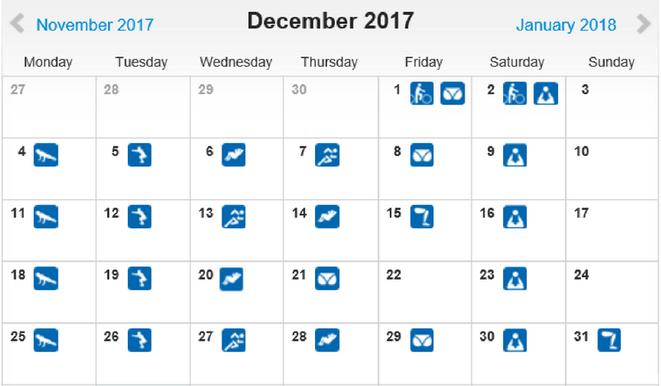 freaky routine, tägliche Übungen, Projekt 100, runtastic, Statistik Dezember 2017