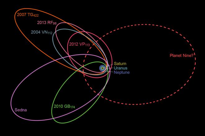 プラネット・ナインと他の6個の太陽系外縁天体の軌道(惑星X wikiより)