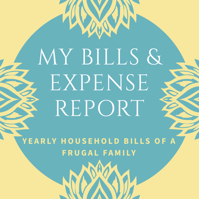 my bills and expense report the domestic economy