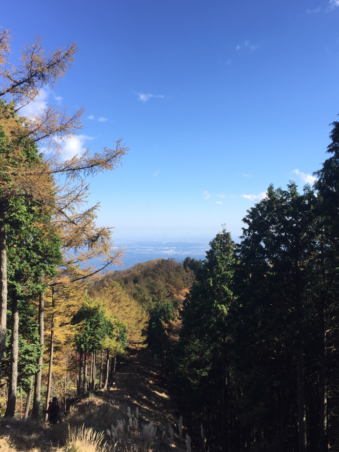 View point to the central Tokyo from the mountain in Western Tokyo Tama hiking trecking nature healing tourist spot Visit Tama Tourism