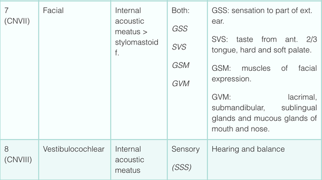 cranial nerve function