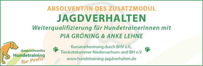 Anti-Jagdtraining Hund Neuhofen Linz Oberösterreich