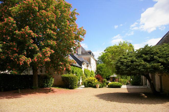 Le moulin de Bacchus chambre d'hôtes au cœur des châteaux de la Loire