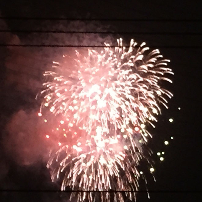 Image photo of Fireworks at Showakinen Park Tokyo Tachikawa 昭和記念公園の花火 東京都立川市