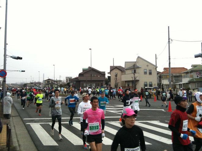 Tachikawa City Half Marathon event 立川シティハーフマラソン 昨年大会の模様 sports event TAMA Tourism Promotion - Visit Tama スポーツイベント 多摩観光振興会