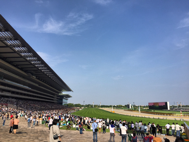 Tokyo Racecourse Fuchu city sport horserace event attraction exiting spot 東京競馬場 東京都府中市 競馬 スポーツ イベント お祭り 祭典 多摩