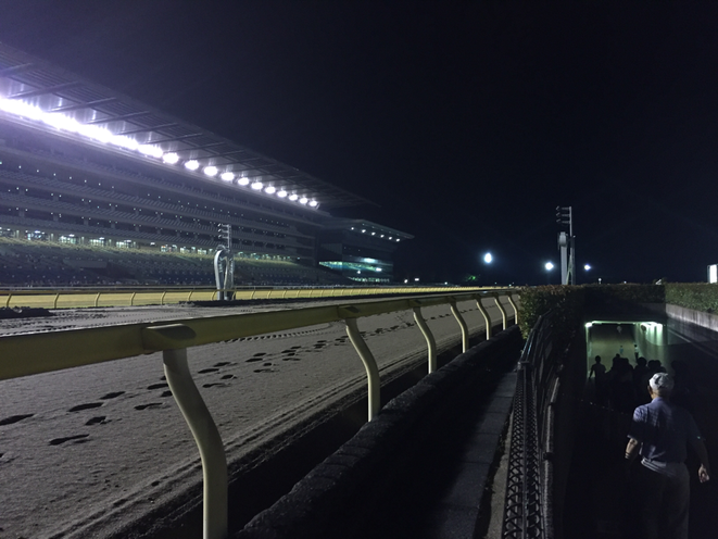 Beside of Dirt course at Tokyo Racecourse Tokyo Fuchu city JRA horse riding fireworks event 東京競馬場 ダートコース脇 東京都府中市 JRA 中央競馬 花火大会 イベント