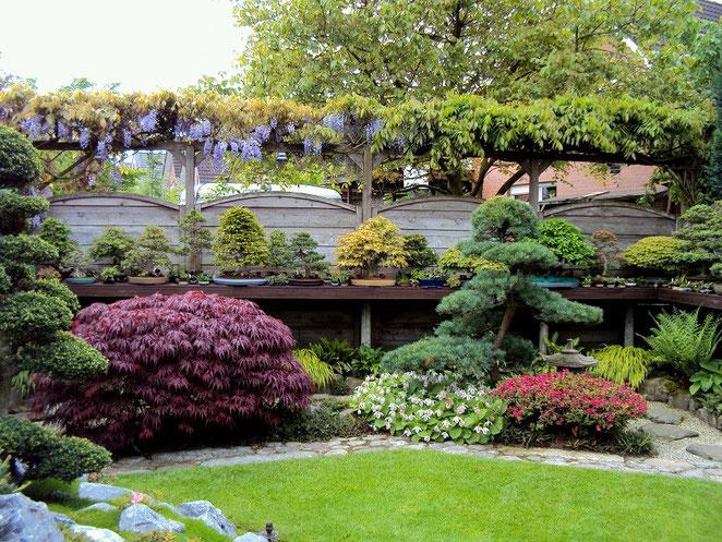 Bonsai-Garten 2014