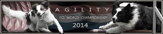 Bild anklicken und Ihr kommt auf die Offiziele HP der Agi WM 2014