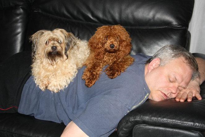 Das ist Pit als Baby , Irco und .... mein Mann beim Mittagsschlaf:)