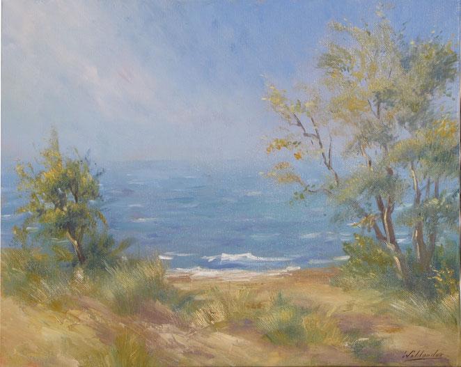 Tony Wahlander (Wåhlander) la mer ses vagues et ses arbustes