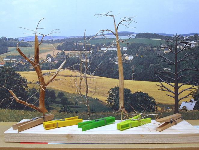 Baumbau für die Modellbahn