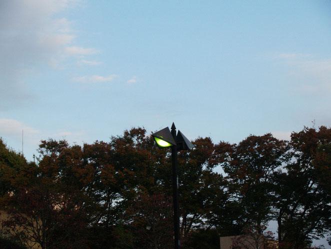 上野公園街灯