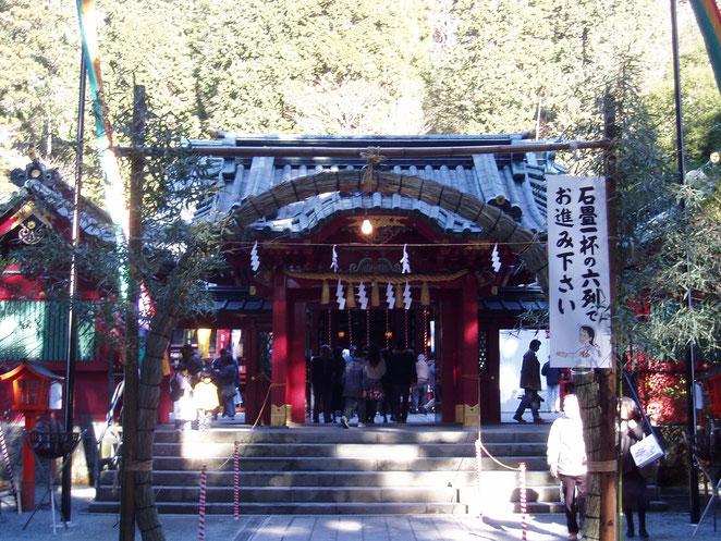 あじさい鍼灸マッサージ治療院 箱根神社の初詣