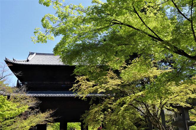 あじさい鍼灸マッサージ治療院 南禅寺の三門