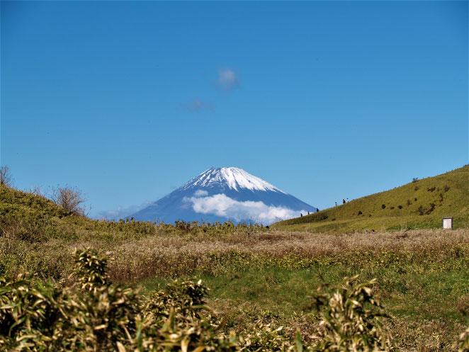 あじさい鍼灸マッサージ治療院 富士山が見える